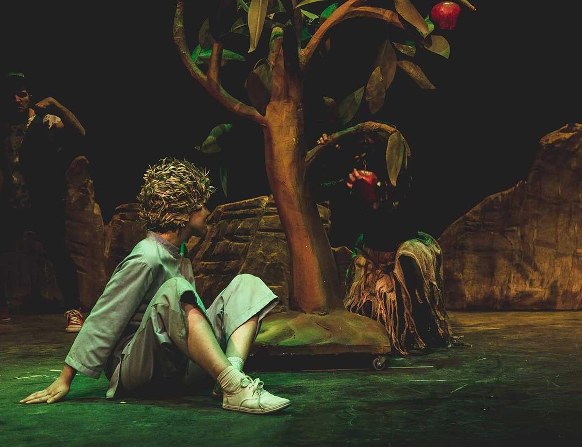 theatre-littleprince
